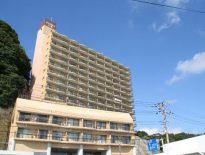 売マンション ダイアパレス小湊B-302号室 330万円
