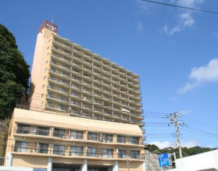 売マンション ダイアパレス小湊Aウイング(4階部分) 250万円